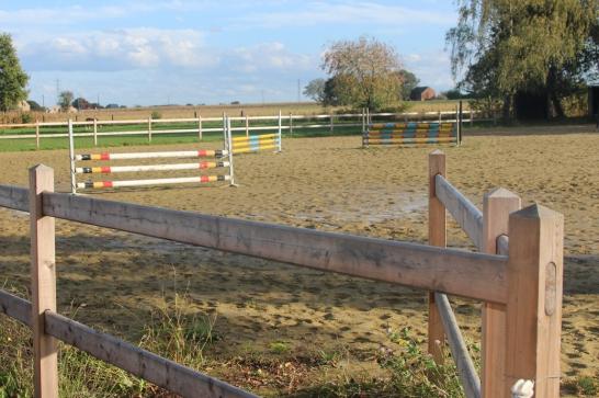 Paardenomheining in Lariks